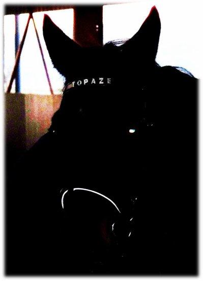 Topaze Du Teck ♥