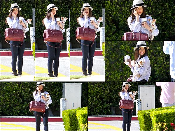06/04/2013 : Lucy, son chien dans les bras, a été aperçue téléphonant dans les rues de Beverly Hills. (LA)  La miss est très mignonne sur ce candid. J'aime beaucoup la voir aussi rayonnante. Beau top pour sa tenue et mention spéciale pour le chapeau.
