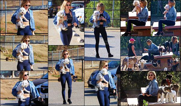 20/11/2018 : Lucy a emmené son petit chien Elvis se dégourdir les jambes dans un parc spécial pour chiens. Elle porte une nouvelle fois sa tenue décontractée. J'aime beaucoup sa veste en jean courte qui met en valeur son ventre plat. Le top est vraiment joli.