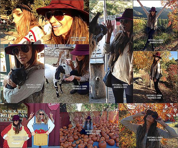 28/10/13 : Shay avec d'une amie a été faire la « Cueillette des Pommes  » et aussi nourrir des animaux.   Shay M. a décidé de prendre du bon temps et de s'amuser avec une de ses amie proche et c'est alors habillé simplement pour l'occasion.