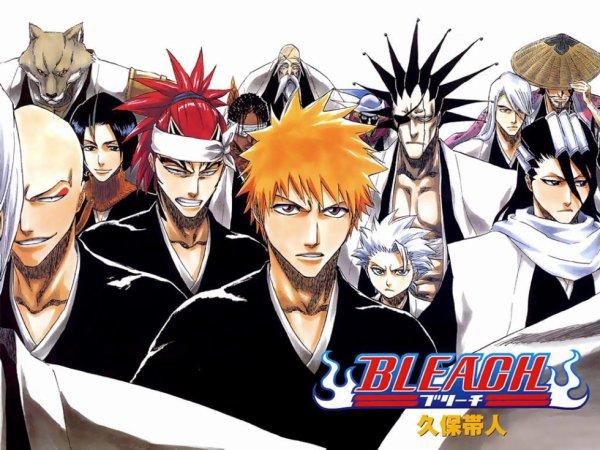 Bleach les capitaine de division et les shinigami
