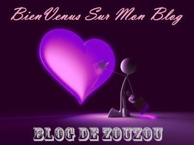 Bienvenus Sur Mon Blog / Welcome To My Blog