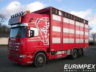 Un Petit Scania r 164-580 Pezzaioli