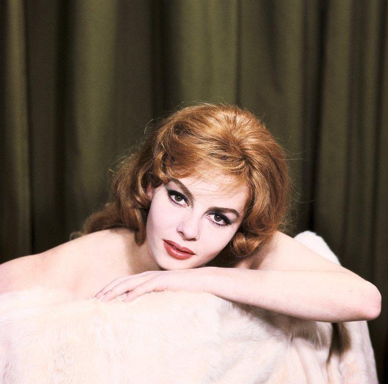 """Jocelyne Yvonne Renée MERCIER, dite Michèle MERCIER, est une danseuse, actrice et chanteuse française principalement connue pour son rôle dans les films de la série """"Angélique, marquise des anges"""". À côté de cette série culte elle a à son actif une filmographie relativement abondante totalisant près d'une cinquantaine de films surtout français et italiens. Elle est une des actrices les plus connues du cinéma français et un sex symbol des années 60. Sa vie personnelle a été émaillée par une suite d'infortunes sentimentales."""