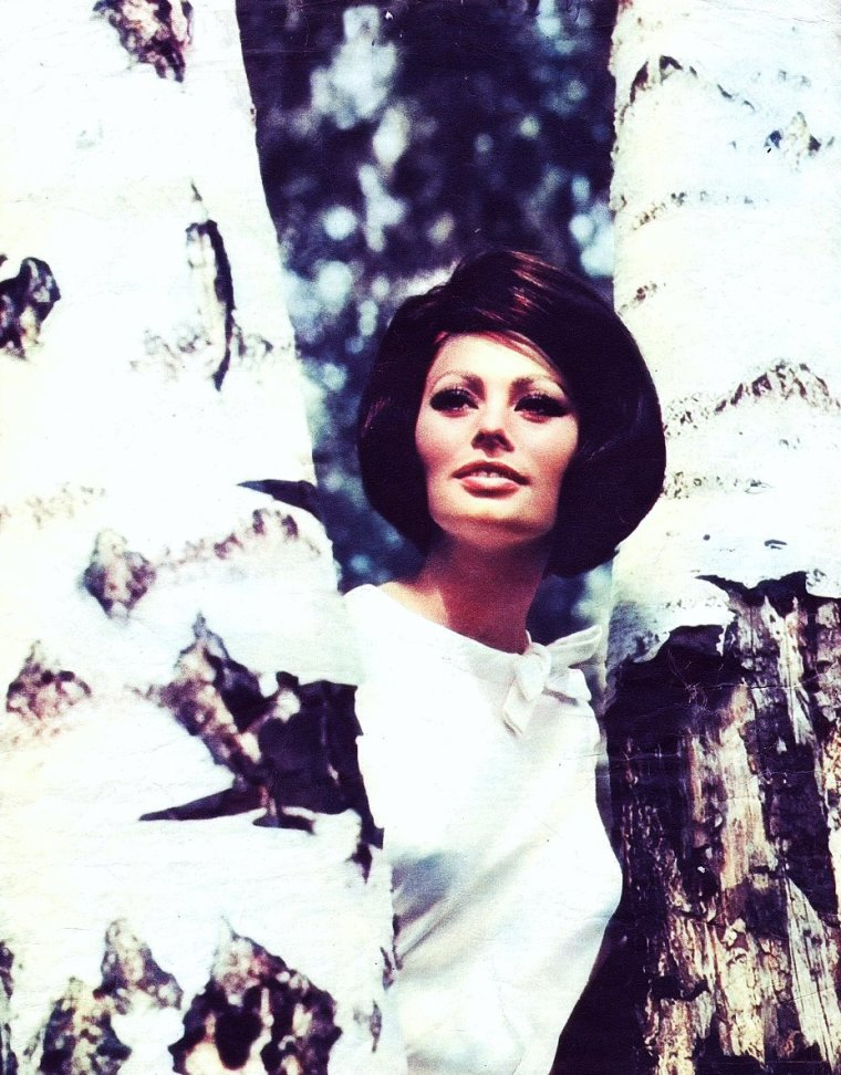 Sophia LOREN pictures (part 2).