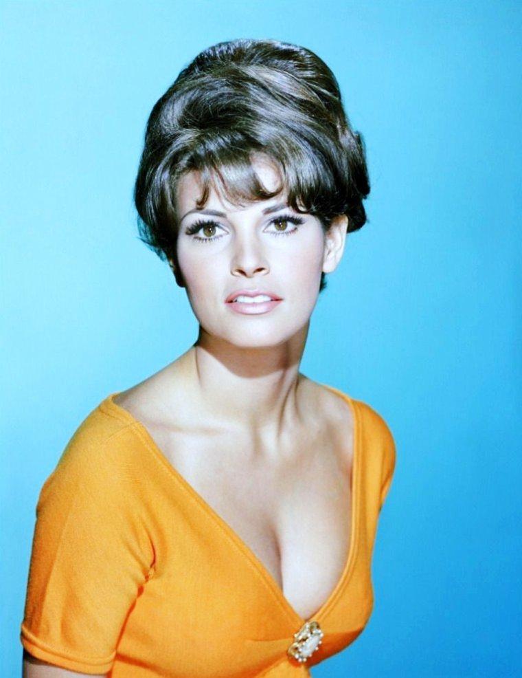 Jo Raquel TEJADA plus connue sous le nom de Raquel WELCH est une actrice américaine, née le 5 septembre 1940 à Chicago, dans l'Illinois aux États-Unis.