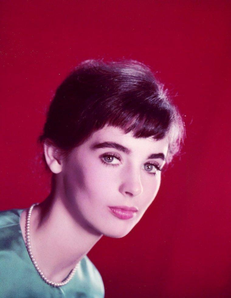 Millie PERKINS est une actrice américaine née le 12 mai 1938 à Passaic, New Jersey (États-Unis).