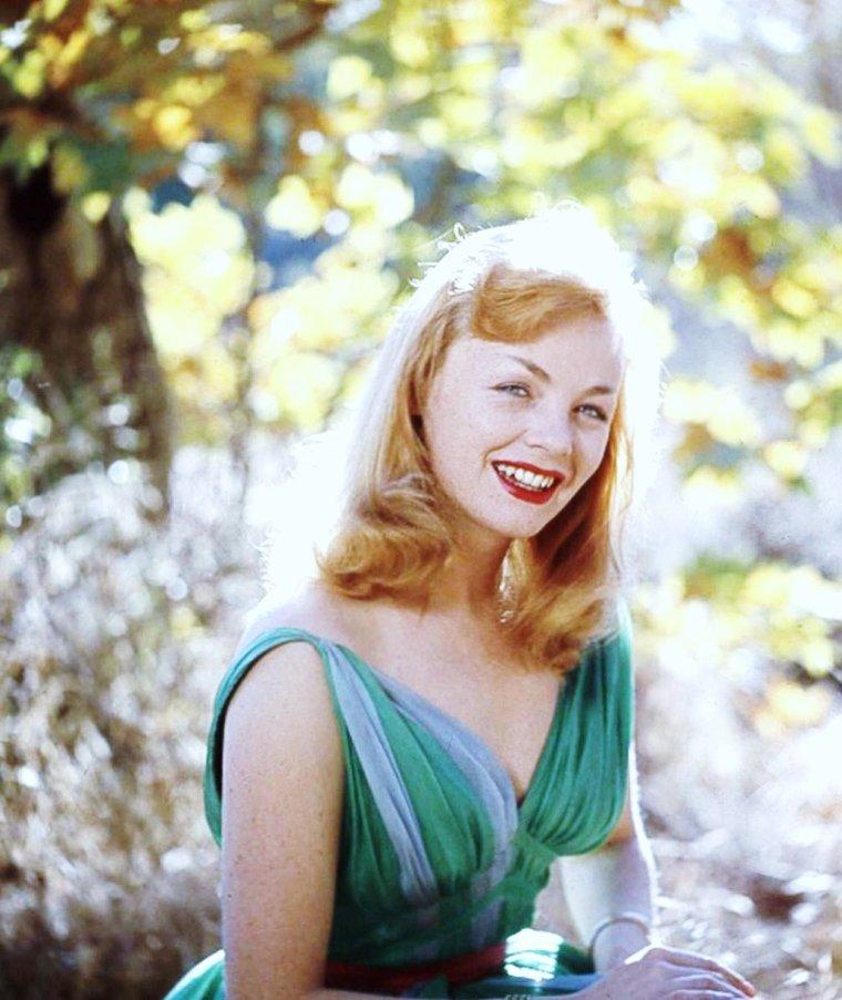 Etchika CHOUREAU, née Jeannine Paulette VERRET le 12 novembre 1929 à Paris, est une actrice française.