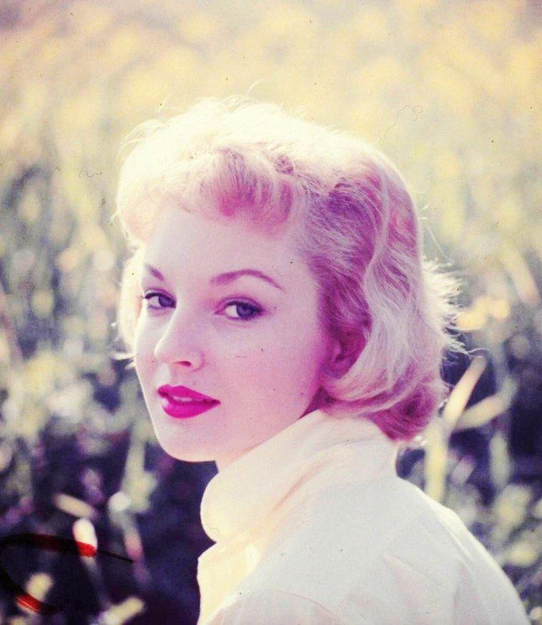 Venetia STEVENSON est une actrice Anglaise (10 Mars 1938, Londres). (photos Allan GRANT).