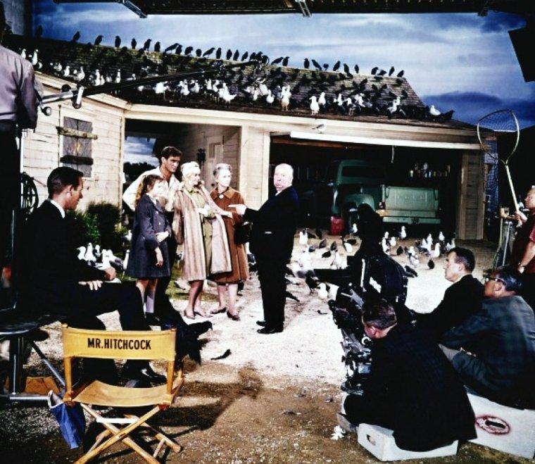 """8 ACTRICES ayant tourné pour le """"Maître du suspense"""", Alfred HITCHCOCK : de haut en bas : Tippi HEDREN / Shirley MacLAINE / Anne BAXTER / Doris DAY / Eva Marie SAINT / Grace KELLY / Ingrid BERGMAN / Janet LEIGH"""