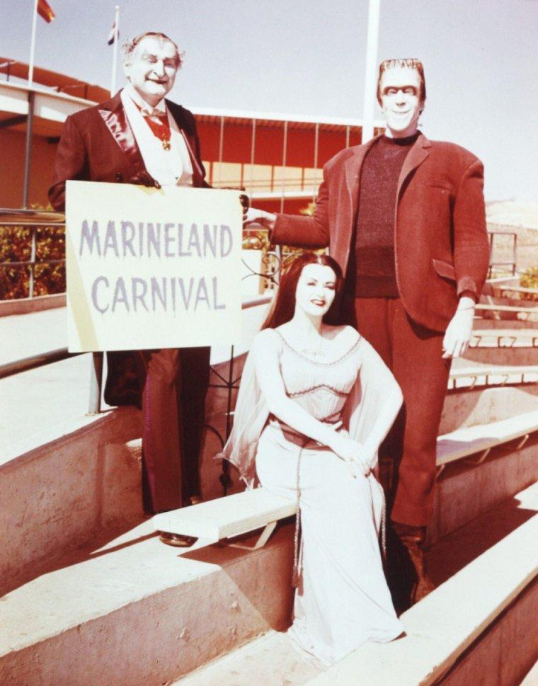 """La belle Yvonne De CARLO est Lily MUNSTER dans """"Les Monstres"""" (The Munsters), une série télévisée américaine en 70 épisodes de 25 minutes, créée par Joe CONNELLY et Bob MOSHER et diffusée entre le 24 septembre 1964 et le 12 mai 1966 sur le réseau CBS. En France, la série a été diffusée à partir du 7 septembre 1986 sur Canal+. Une deuxième série, intitulée """"Les nouveaux Monstres sont arrivés"""" (The Munsters Today), en 72 épisodes de 25 minutes, a été diffusée du 9 octobre 1988 au 24 mai 1991 en syndication."""