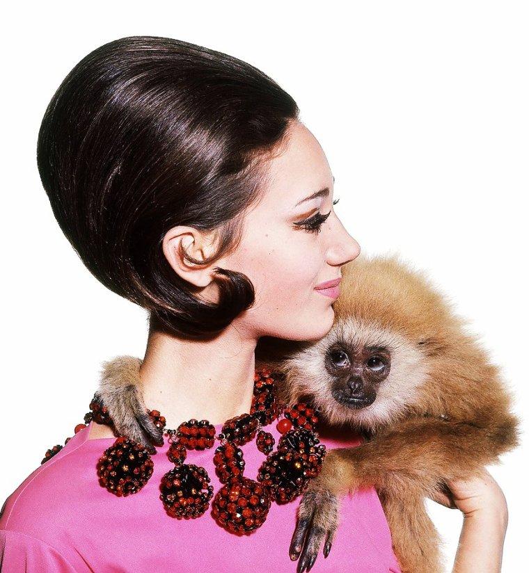 """Marisa BERENSON est une actrice et ancienne mannequin américaine née le 15 février 1947 à New York (États-Unis). (photos de 1965 à 1968, notamment pour les magazines """"Vogue"""" et """"Cosmopolitan"""", certaines signées par Bert STERN)."""