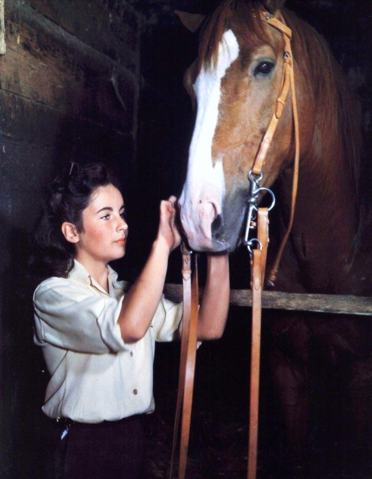 - CITATION DE GANDHI / On peut juger de la grandeur d'une nation par la façon dont les animaux y sont traités. (de haut en bas) Jane FONDA / Natalie WOOD / Audrey HEPBURN / Cheryl MILLER / Ava GARDNER / Ingrid BERGMAN / Elizabeth TAYLOR / Joan COLLINS... (La Fondation Brigitte-BARDOT (F.B.B.) est une fondation vouée à la protection des animaux, fondée par Brigitte BARDOT en 1986. Elle est reconnue d'utilité publique en France depuis 1992) (Fondation Brigitte BARDOT 28 rue Vineuse 75116 Paris - FRANCE tél : 33 (0)1 45 05 14 60 - fax: 33 (0)1 45 05 14 80).