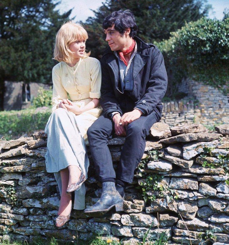 """LA COMPLICITE / Citation / « Mais au fond, il n'y a pas d'amis, il n'y a que des complices. Et quand la complicité cesse, l'amitié s'évanouit. » de Pierre REVERDY / Extrait du """"Le Livre de mon bord"""" / de haut en bas / Olivia De HAVILLAND and Bette DAVIS / Marilyn MONROE / Romy SCHNEIDER and Alain DELON / Hayley MILLS and ? / Betty HUTTON, Diana LYNN, Mimi CHANDLER and Dorothy LAMOUR / Grace KELLY and William HOLDEN / Debra PAGET and Elvis PRESLEY / Elizabeth TAYLOR, Robert WAGNER and Natalie WOOD"""