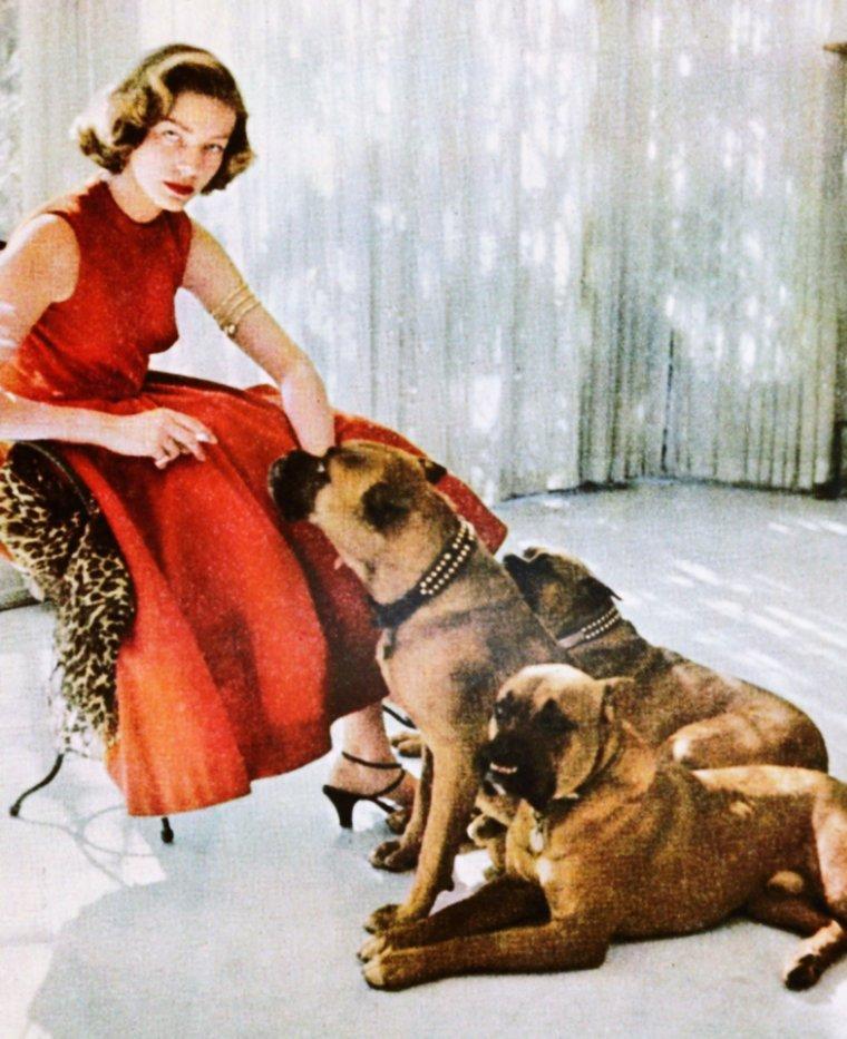 CITATION / « La différence entre la femme et le chien réside dans le prix du collier. » de François GIRAUDO / de haut en bas / Claudette COLBERT / Audrey HEPBURN / Zsa Zsa GABOR / Jayne MANSFIELD / Jean SIMMONS / Jeanne CRAIN / Lauren BACALL / June LOCKHART