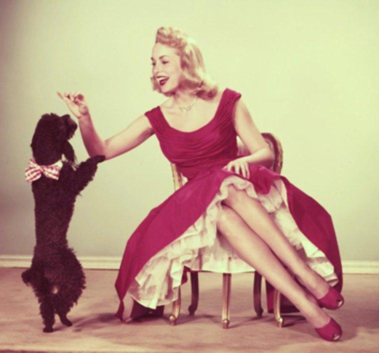CITATION / « La nature avait donné à l'homme sa femelle comme à tous les animaux. C'est l'homme qui a inventé la femme - et c'est sa meilleure invention. » de Alphonse KARR / (RARES PHOTOS) de haut en bas / Susan HAMPSHIRE / Audrey HEPBURN / Debbie REYNOLDS / Brigitte BARDOT / Janet LEIGH / Natalie WOOD / June ALLYSON / Joan LESLIE