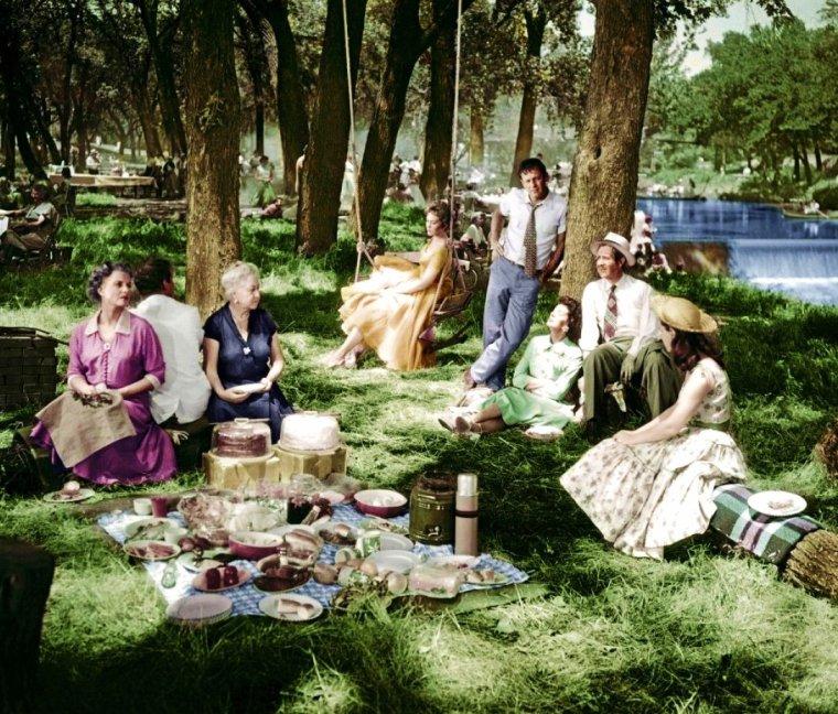 """BON APPETIT ! à toutes et à tous... avec Kim NOVAK dans """"Picnic"""" (1955) ; Certes, c'est pas encore pour aujourd'hui les picnics."""