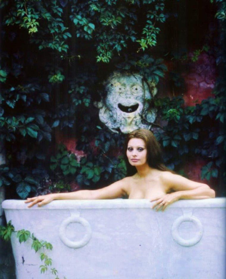 PROVERBE LATIN / « Les bains, le vin et Vénus usent nos corps, Mais les bains, le vin et Vénus font la vie. » Nos STARS prenant un bain... de haut en bas : Yvonne CRAIG / Jayne MANSFIELD / Sophia LOREN / Jane RUSSELL / Audrey HEPBURN / Marilyn MONROE / Elizabeth TAYLOR / Gene TIERNEY