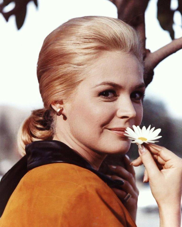 RENAISSANCE / 20 Mars, jour de Printemps... La fleur en est le plus joli symbol... (de haut en bas) Natalie WOOD / Donna LYNN / Jane RUSSELL / Leslie CARON / Joyce HOLDEN / Sandra DEE / Brigitte BARDOT / Nancy KWAN