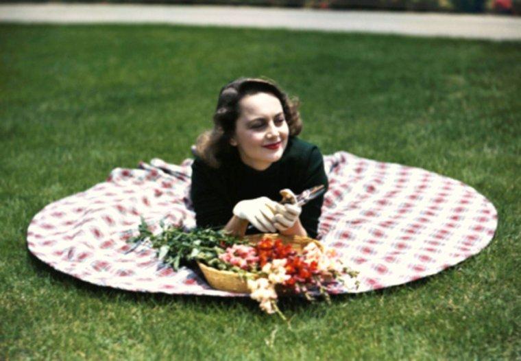 CITATIONS / « Les filles sont les roses de la couronne de la vie. Les roses et les filles font resplendir le printemps. » de Heinrich HEINE / « Les fleurs du printemps sont les rêves de l'hiver racontés, le matin, à la table des anges. » de Khalil GIBRAN / de haut en bas / Marilyn / Pier ANGELI / Gina LOLLOBRIGIDA / Suzanne PLESHETTE / Romy SCHNEIDER / Alexis SMITH / Rosemary CLOONEY / Olivia De HAVILLAND