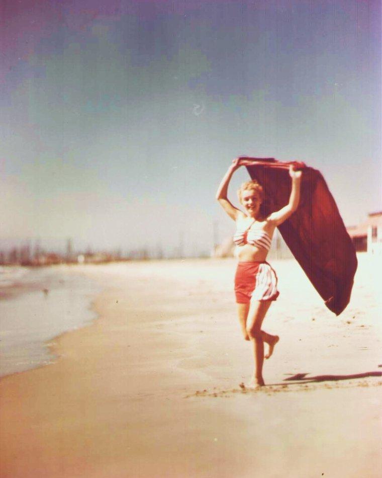 Le bel été avec... (de haut en bas) Virginia McKENNA / Joan COLLINS / Mitzi GAYNOR / Marilyn / Susan SAINT JAMES / Audrey HEPBURN / Ava GARDNER / Sophia LOREN