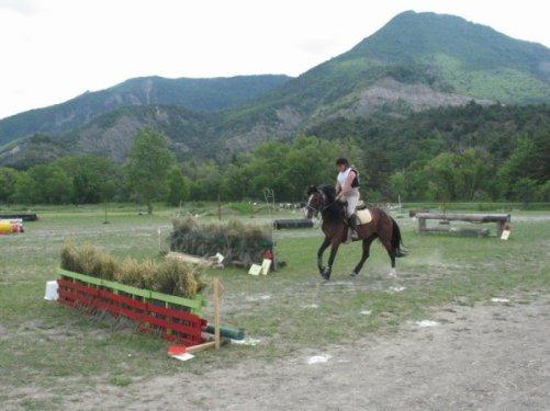 Petit poney  toute belle Petit poney toute contente Petit poney tout gourmande