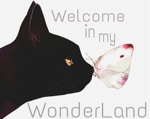 Welcome in my wonderland