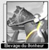 Elevage-du-Bohneur