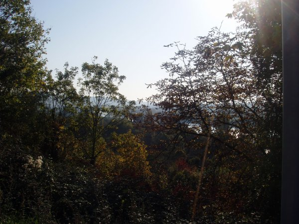 Les pensées du promeneur solitaire ébloui par l'éclat rayonnant de la nature