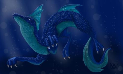 ~ Dragon des côtes ~
