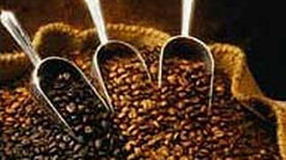 Ces grains de café (première partie)