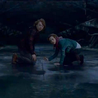 Harry Potter and the deathly hallows Part 2 / In the Chamber of Secrets (2011)