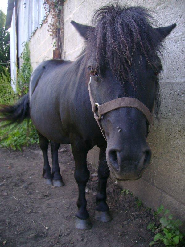 Emir ♥