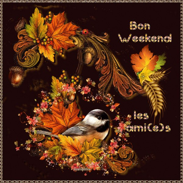 Bon weekend mes ami(e)s