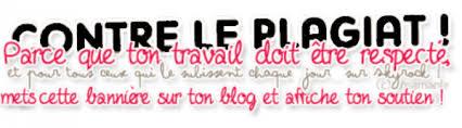 Présentation du blog ❤