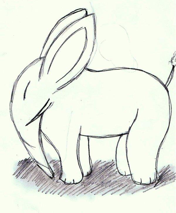 éléphant Lapin