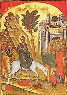 Rameaux de palmes Le dimanche des Rameaux précède Pâques. Il célèbre l'entrée de Jésus à Jérusalem. Il est sur un âne. La foule l'acclame en brandissant des rameaux et en criant : Hosanna !