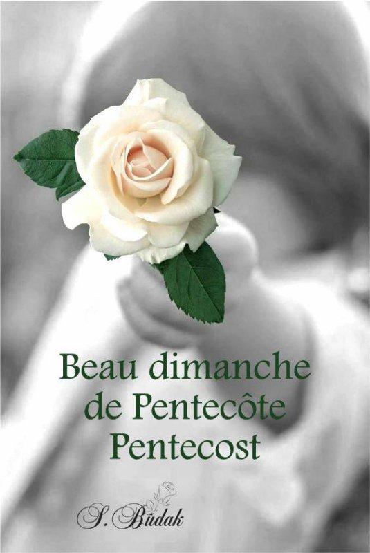 BON DIMANCHE DE PENTECOTE