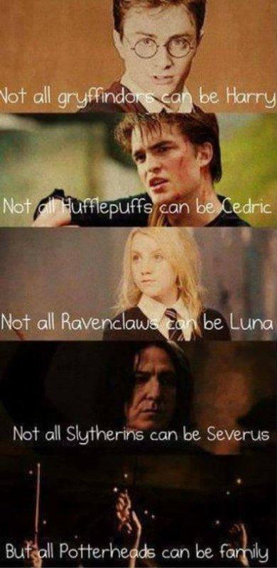 I'm a PotterHead !