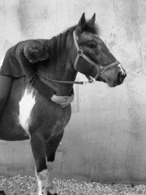 """Si un jour on vous dit """"ce n'est qu'un cheval !"""", contentez vous de sourire, ils ne peuvent pas comprendre."""
