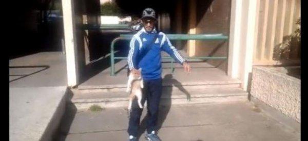 """Marseille/CHOC -  """"Le lanceur de chat"""" a été placé en prison et sera jugé lundi"""