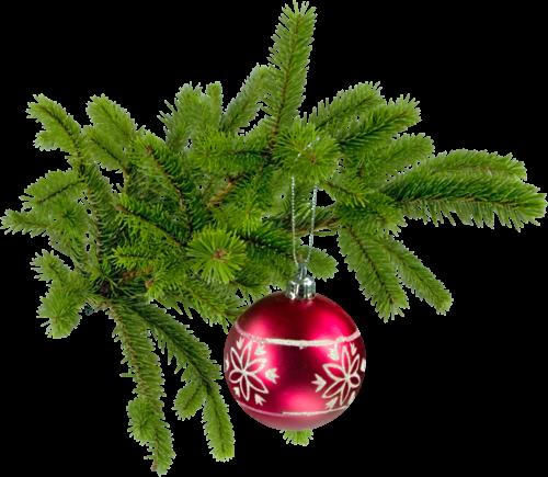 Craciun fericit! Joyeux Noël !