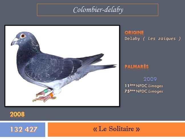 """""""Le solitaire"""", bague n° 132 427"""