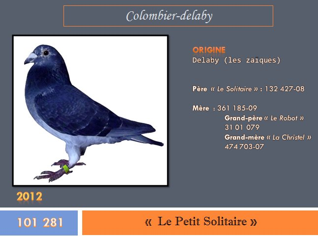 """"""" Le petit Solitaire """", bague n° 101 281-12"""
