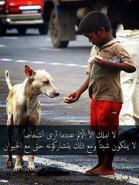 لا املك إلا الألم عندما أرى أشخاصاً لا يملكون شيئاً ومع ذلك يتشاركونه حتى مع الحيوان ..!