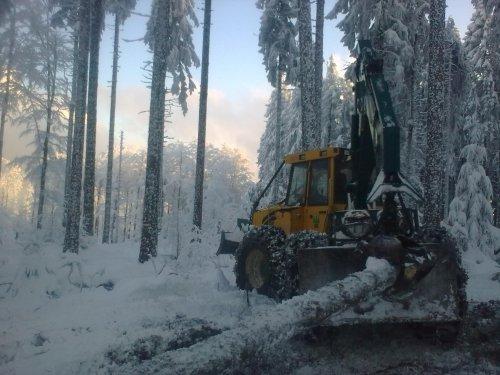 une belle journée en hiver 2010