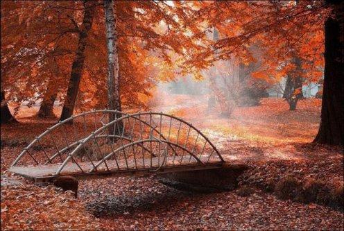 suivez ce chemin.......... et vous serez chez moi alors bienvenu mes AMIiiiiiiiiiiiiiiiiiiiiiSS