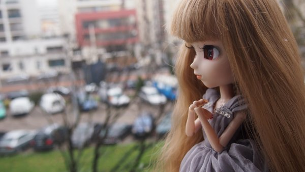 Mercredi 28 janvier 2015:~Shizuka~