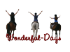 Wonderful-days