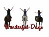 Wonderful-days